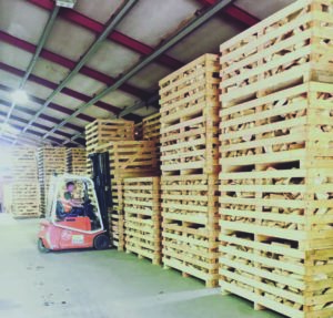 Wooden pallets in warehouse
