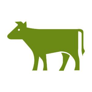 EBRI events to help West Midlands farm-business and landowners exploit bioenergy opportunities