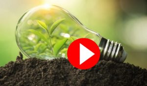 Image of lightbulb placed on top of soil