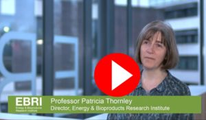 Image of Patricia Thornley, Director of EBRI